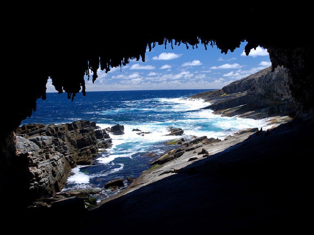 Kangaroo Island Tours From Adelaide Day Tour