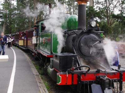 Puffing Billy Steam Train on The Penguins 'n' Puff Tour