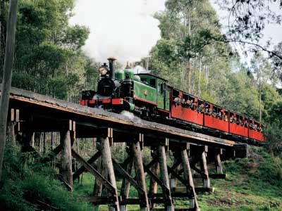 The iconic Puffing Billy steam train