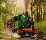 Puffing Billy steam train chugging through Sherbrooke Forest
