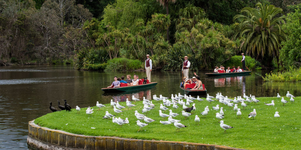 Melbourne Highlights Day Tour with Punting at the Botanic ...