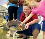 Children gold panning in river at Sovereign Hill