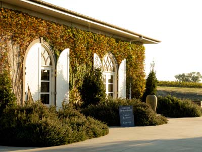 Winery at Dominique Portet