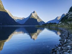 Milford Sound tours
