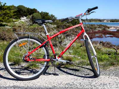 Cruise by bike around Rottnest Island