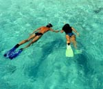 young couple swimming with snorkels and flippers in beautiful turquoise water at rottnest island