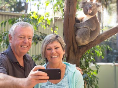 Koala selfie at Featherdale Wildlife Park