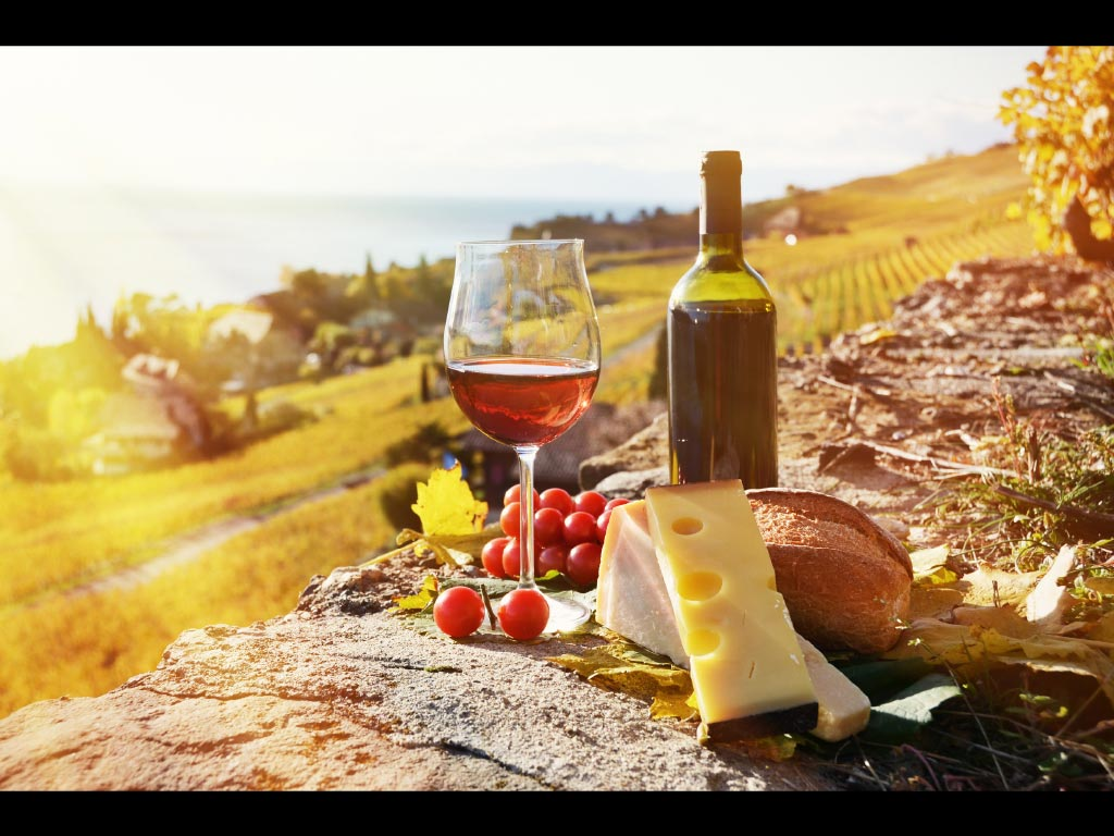 Hunter valley food and wine lovers tour gray line for Cuisine wine