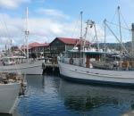 fishing boats docked at elizabeth street pier