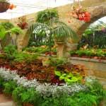 Botanical Gardens Observatory