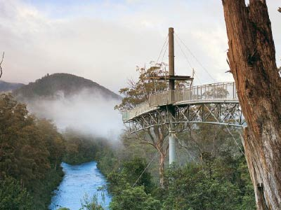Tahune Forest Airwalk